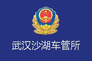 武汉沙湖车管所