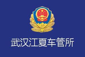 武汉江夏车管所