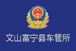 文山富宁县车管所