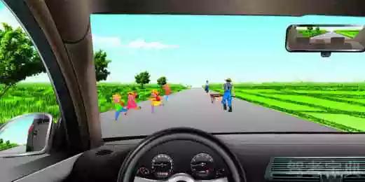 如图所示,驾驶机动车在乡间道路上行驶,以下做法正确的是什么?